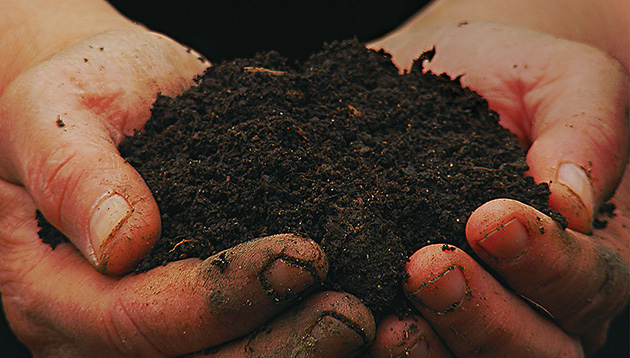 Microorganisms to Bring about a Change in Japanese Agriculture, Beginning with the Soil