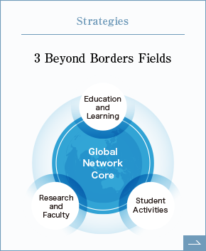 Strategies 3 Beyond Borders Fields